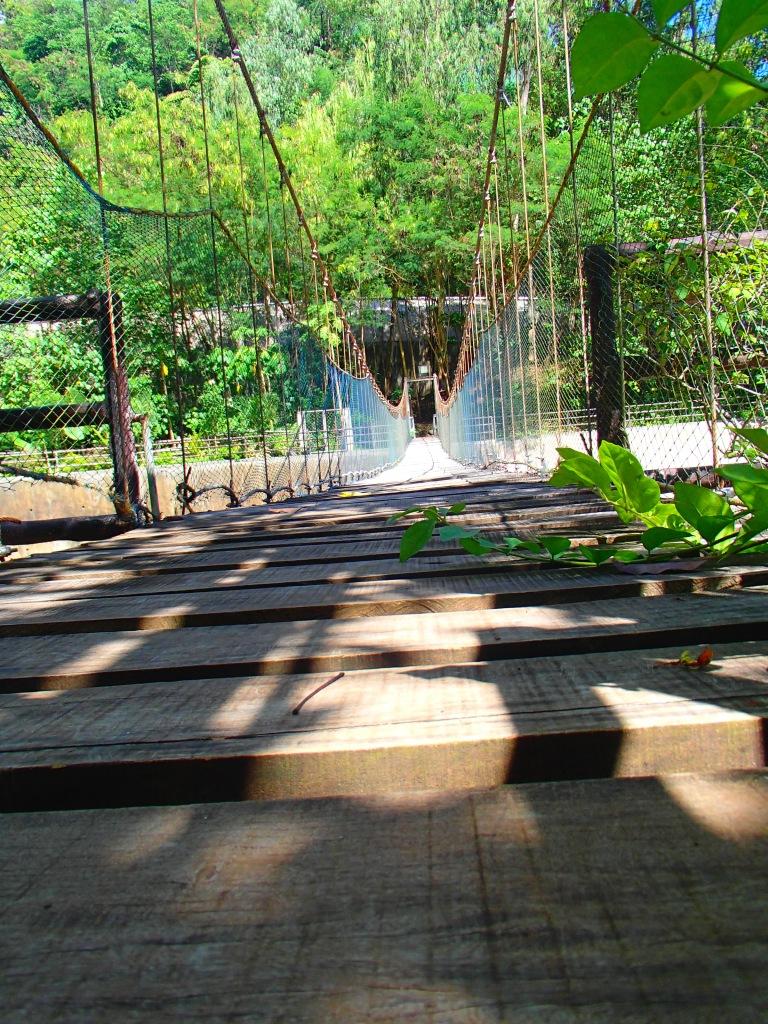 Hanging Bridge inside NPC Nature park